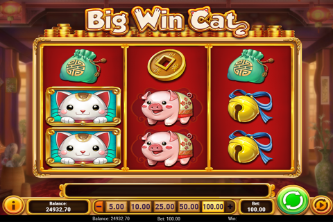 big win cat playn go spielautomaten
