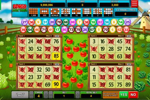 bingo hortinha caleta gaming