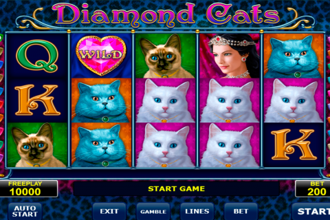 diamond cats amatic spielautomaten