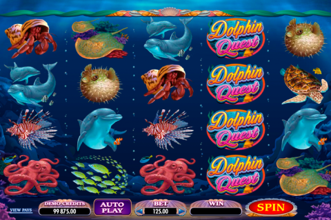 dolphin quest microgaming spielautomaten