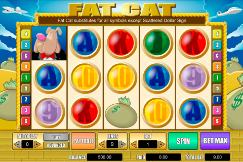 fat cat amaya spielautomaten
