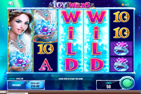 icy wilds igt spielautomaten