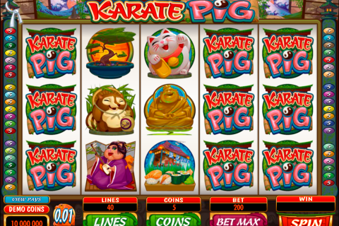 karate pig microgaming spielautomaten