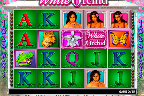 white orchid igt spielautomaten