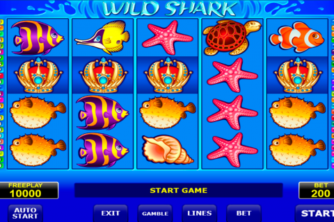 wild shark amatic spielautomaten