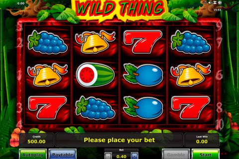 wild thing novomatic spielautomaten